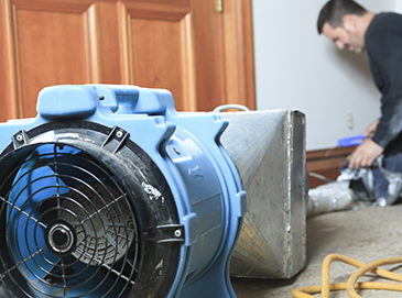 Dehumidifying a House in Crystal Lake, IL